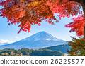 富士山 楓樹 紅楓 26225577