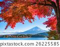 富士山 枫树 枫叶 26225585