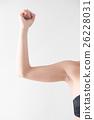 上臂 手臂 臂 26228031