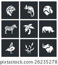 Vector Set of Africa Animals Icons.  26235278