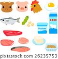 단백질이 풍부한 음식의 일러스트 세트 26235753