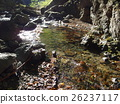 rivers, autumn, autumnal 26237117