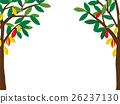 Valentine's cacao tree 26237130