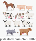 vector, sheep, goat 26257002