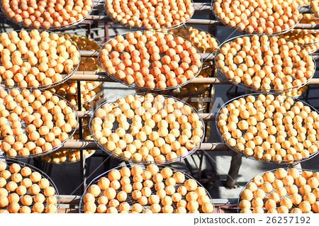 曬柿餅 26257192