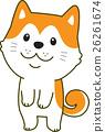 秋田犬 26261674