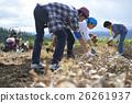 體驗農業經驗的年輕人 26261937