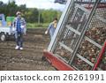 農業 農作 農事 26261991
