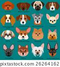 小狗的臉設置類型名稱 26264162
