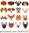 dog, dogs, toy 26264163