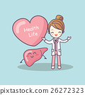 cute cartoon doctor with liver 26272323