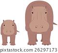 hippopotamus, hippo, hippopotamu 26297173