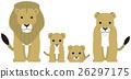 狮子 矢量 猫科 26297175