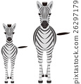 Parent and child of a zebra 26297179