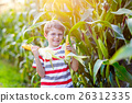 Kid boy with sweet corn on field outdoors 26312335