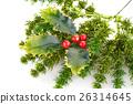 Christmas decoration 26314645