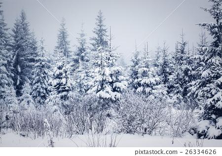 snowy winter landscape 26334626