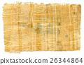Egyptian Papyrus 26344864