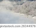 丹頂と樹氷と霧 26344976
