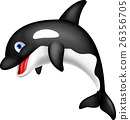 Killer whale cartoon 26356705