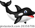 Killer whale cartoon 26356706