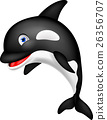 Killer whale cartoon 26356707