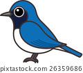 조류, 새, 작은 새 26359686