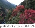 ฤดูใบไม้ร่วงใบไม้ใน Hatonosukekya 26361726