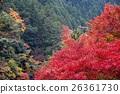 ฤดูใบไม้ร่วงใบไม้ใน Hatonosukekya 26361730