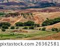 field, hill, trees 26362581