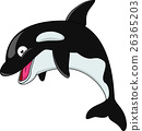 Killer whale cartoon 26365203