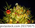 크리스마스 트리 26370675