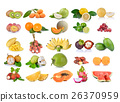 Tropical fruit on white background 26370959