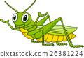 Green grasshopper cartoon 26381224