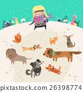 Girl, dog-walker, taking pack of dogs for a walk. 26398774