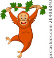 Cute orangutan cartoon hanging on a tree branch 26408840