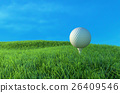Golf ball on the green. 26409546