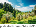 Beautiful Spring Tropical Garden Or Forest Woods 26427695