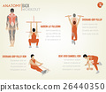 design of info graphic of abdominal back workout 26440350