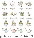 herbal, teapot, teapots 26442026
