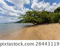 馬達加斯加 海灘 天堂 26443119