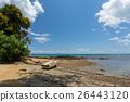 馬達加斯加 海灘 藍色 26443120