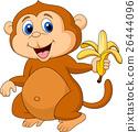 Cute monkey eating banana 26444096