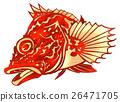 魚圖 26471705