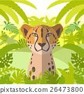 cheetah animal wild 26473800