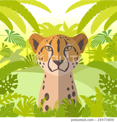 Cheetah on the Jungle Background 26473800