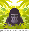 gorilla, vector, animal 26473813