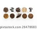 อาหารแมลง: แมลง 26478683
