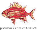 魚圖 26488126
