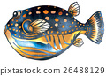 魚圖 26488129
